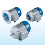Асинхронные однофазные электродвигатели